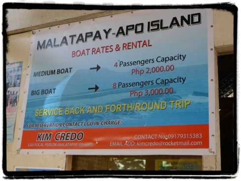 Boat rental rated going to Apo Island